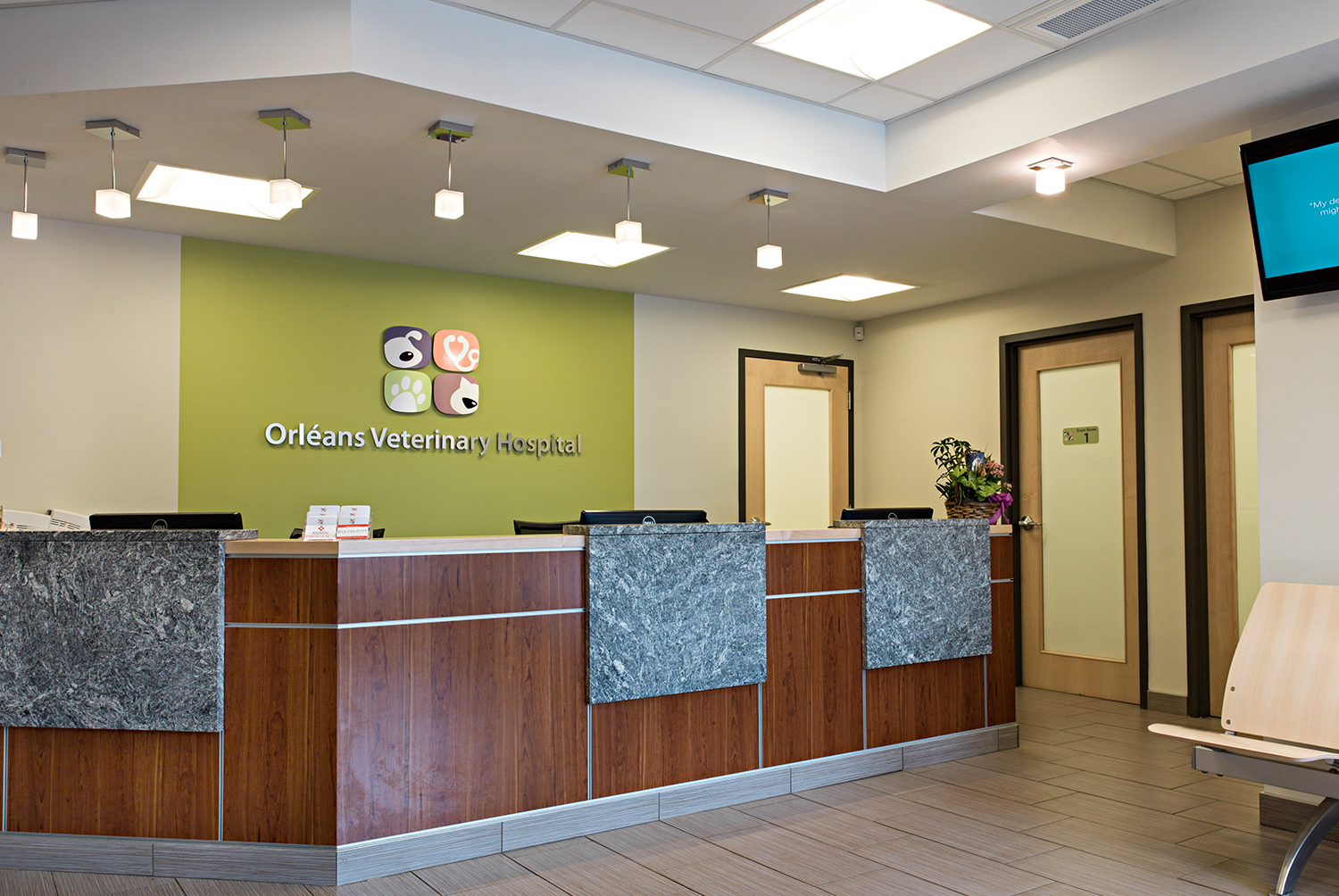 71 interior design for veterinary clinic don mills for Clinic interior design